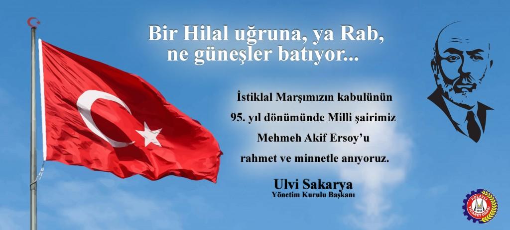 Turk_Bayragi_83702
