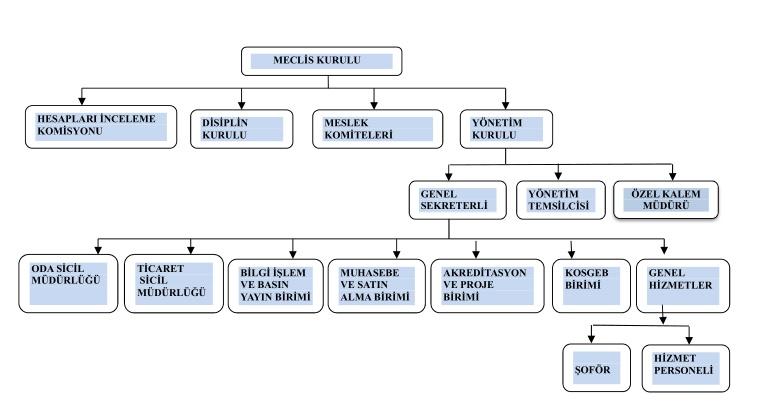 org.şeması_1-crop