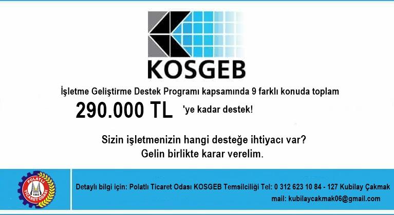 kosgeb-kobigel_blogLarge